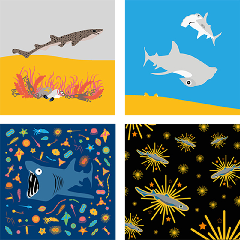 Love Sharks 2021 Calendar - Artwork examples