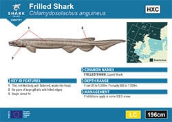 Frilled Shark Pocket Guide (pdf)