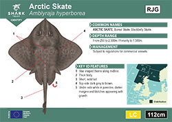 Arctic Skate Pocket Guide (pdf)