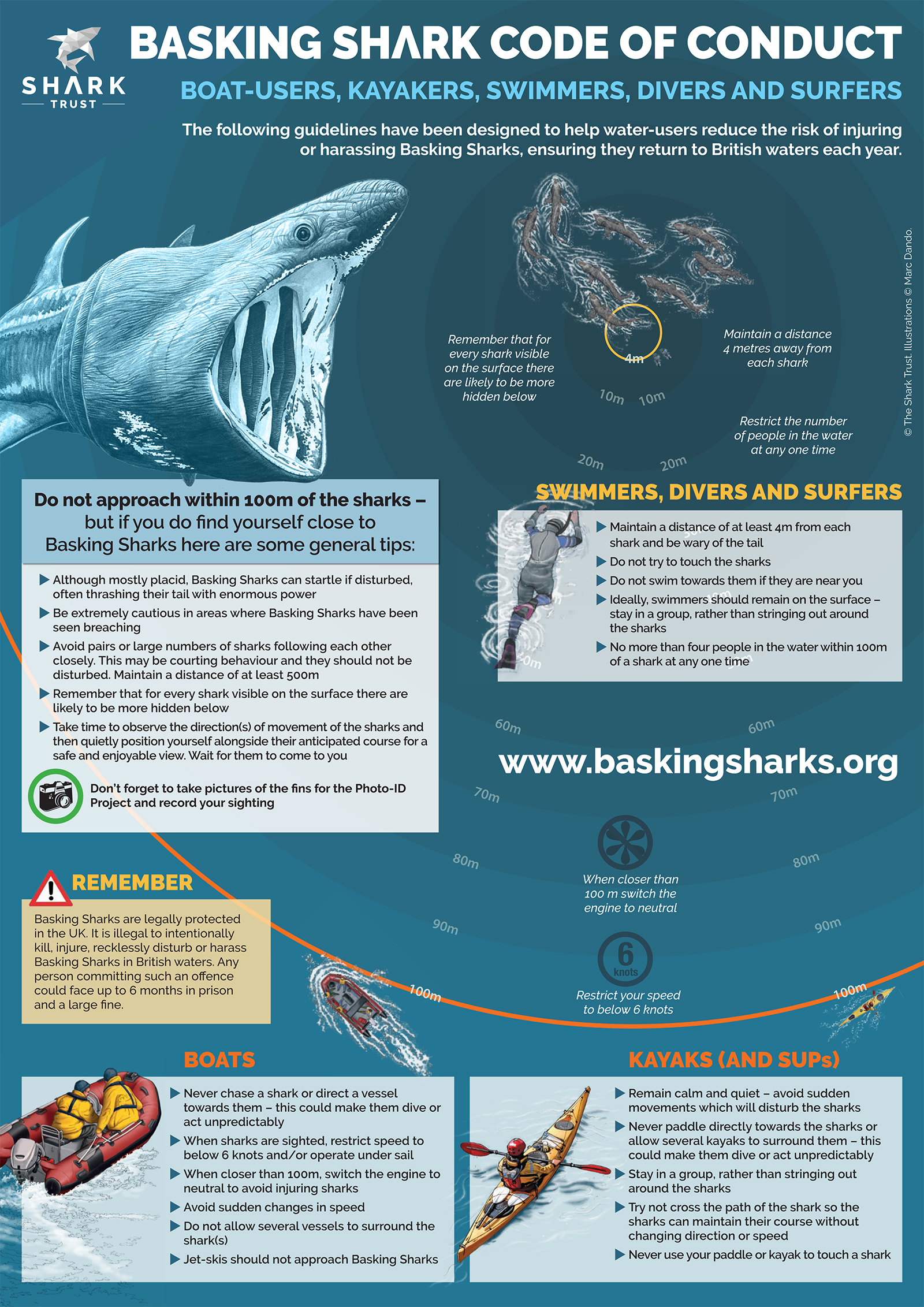 Basking Shark Code of Conduct