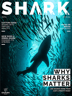 Cover of Shark Focus Magazine #63