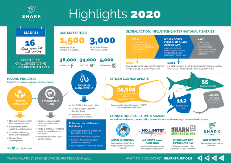 Shark Trust 2020 Achievements infographic