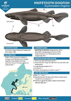 Knifetooth Dogfish ID Guide (pdf)
