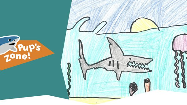 Shark Art by Nathanial (age 4)