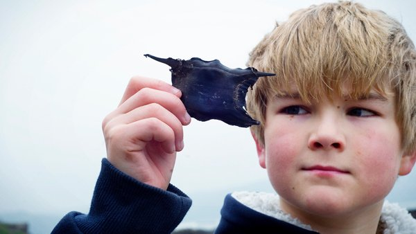 Boy Holding Eggcase © SG Haywood_Photography