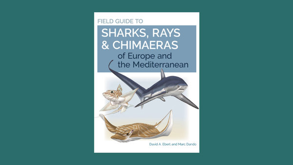 Book Review: Field Guide to Sharks of Europe